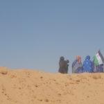 """Personalidades pedem """"posição clara"""" do Parlamento sobre libertação de presos sarauís"""