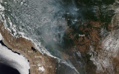 """Amazónia, um """"pulmão vital para o planeta"""", diz o Papa"""