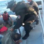 13 pessoas morreram num naufrágio ao largo de Lampedusa