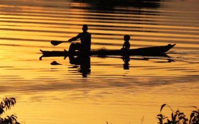 Amazónia, um pulmão a proteger