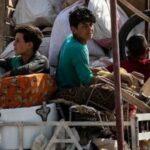 Denunciadas atrocidades contra refugiados que regressaram à Síria