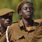 Papa Francisco e arcebispo de Cantuária irão ao Sudão do Sul juntos, se houver Governo em vez de guerra