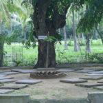 """Experimentar o silêncio nos """"ashrams"""" da Índia - um testemunho"""