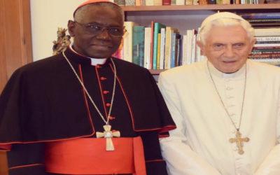 """Papa sentirá """"muita tristeza"""" pela manipulação feita de Bento XVI"""