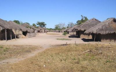 Bilibiza: do sonho da água à destruição que chegou do mato
