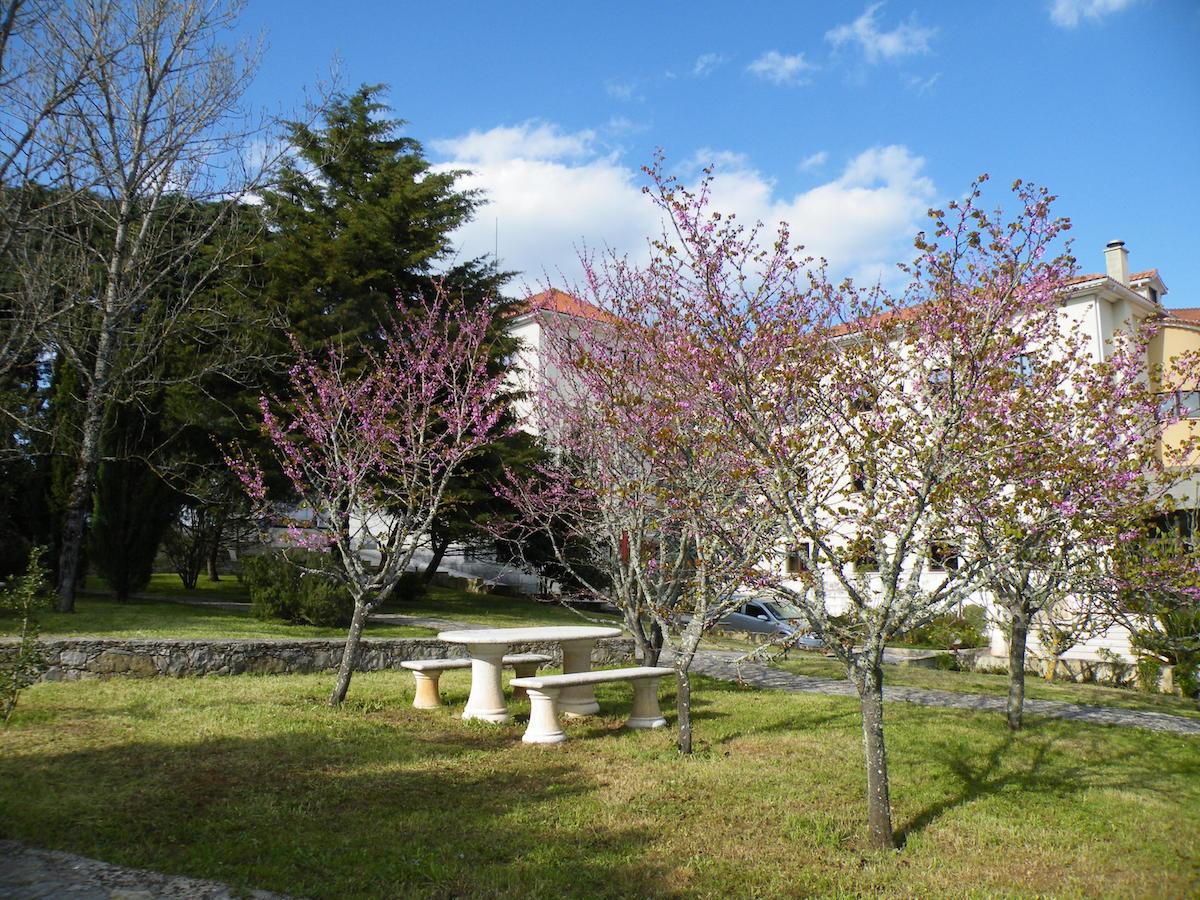 Primavera. Foto Lopes Morgado