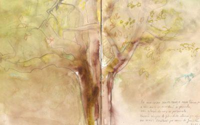 """""""Travessia com Primavera"""", um exercício criativo diário"""