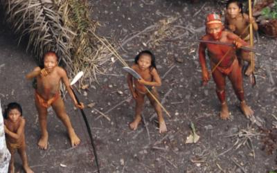 Quase 200 mil pedem ação urgente do governo brasileiro para evitar genocídio de indígenas