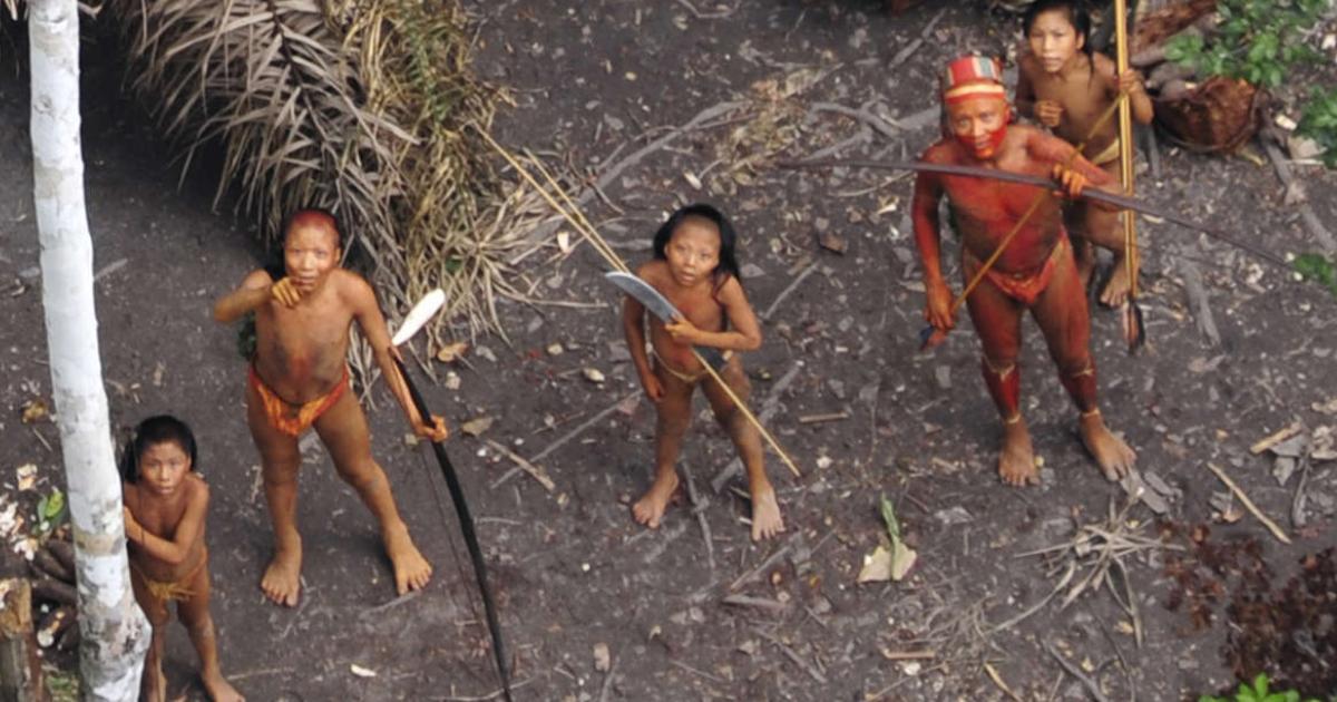 Tribos isoladas na Amazônia brasileira, imagem aérea em 2010. © G.Miranda_FUNAI_Survival (1)
