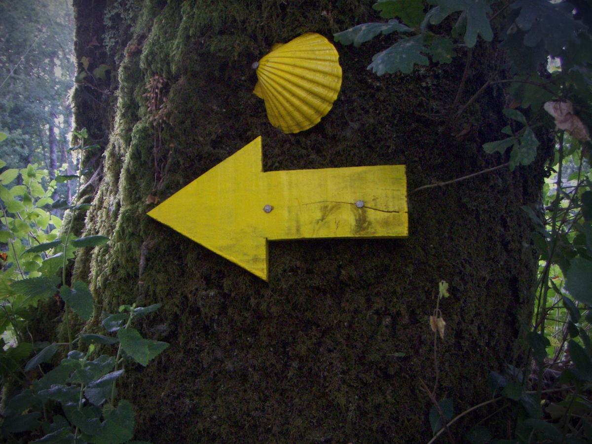 Cópia de caminho santiago compostela, Foto Clara Raimundo