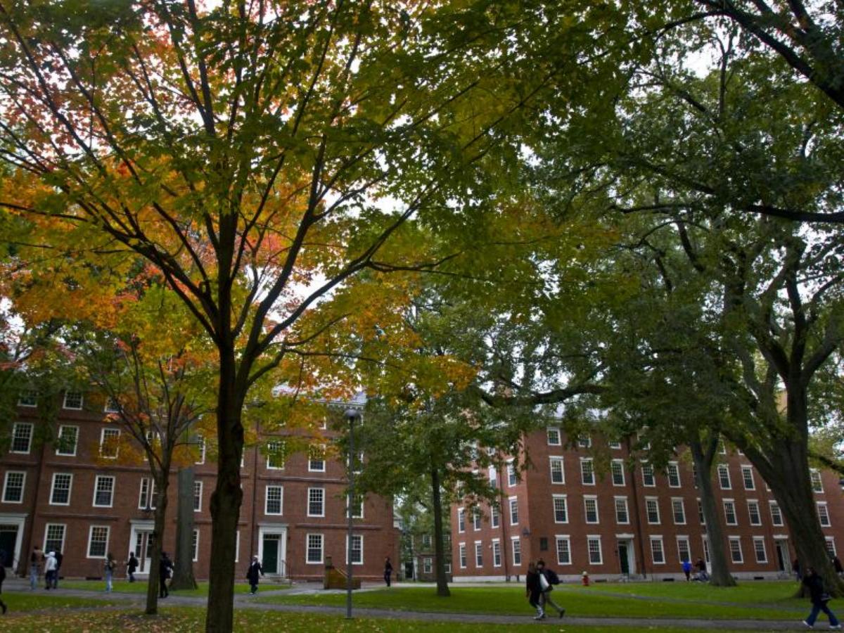 Cópia de universidade de harvard eua, Foto Harvard University