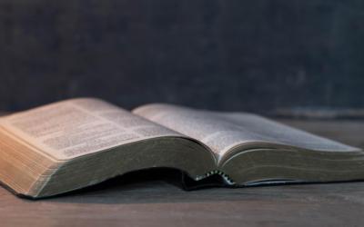 Bíblia completa traduzida em 66 novas línguas em 2020. E vão 704!