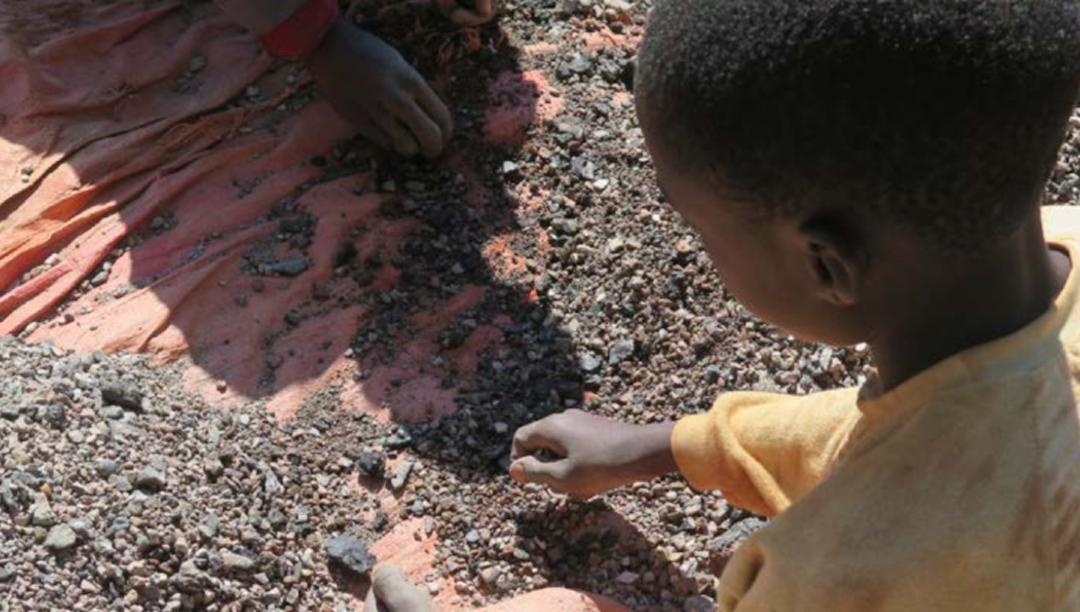 Covid fez inverter progressos de 20 anos na luta contra o trabalho infantil, diz ONU