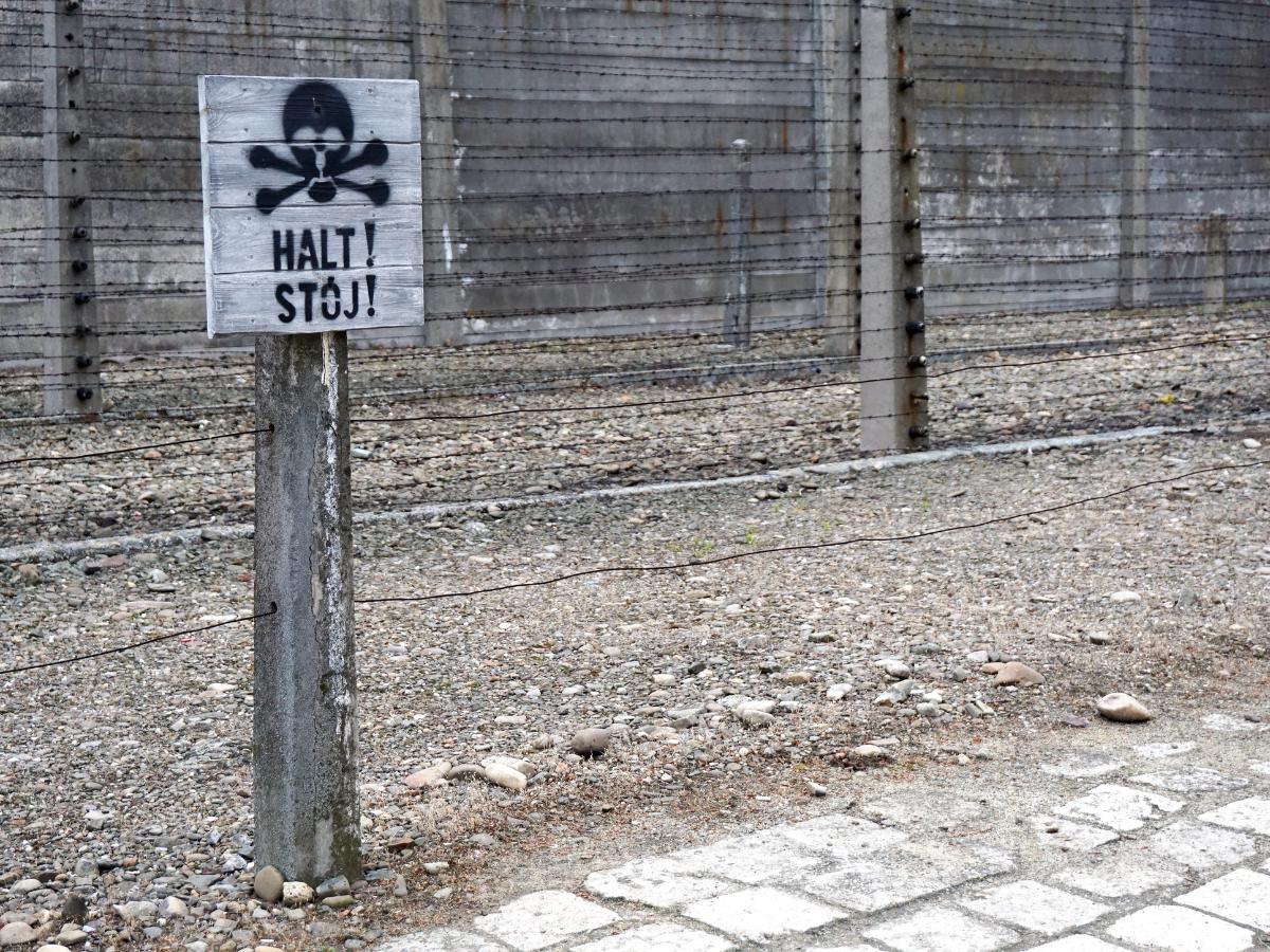 sinal stop auschwitz holocausto