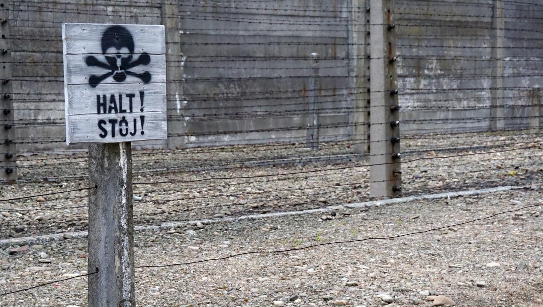 nazis, Israel/judeus, europeus: o que há por trás de certas caricaturas