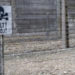 Maioria dos jovens adultos norte-americanos não sabe o que foi o Holocausto, revela sondagem