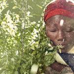 Que mundo queremos? Respostas em 75 fotos celebram 75 anos da ONU e sonham um futuro para todos (fotogaleria)