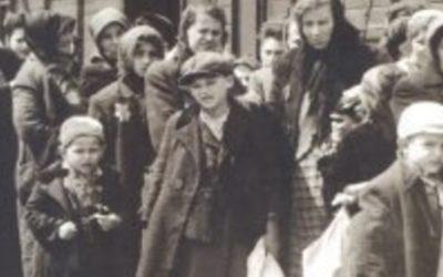 """""""Portugueses no Holocausto"""": o """"descarinho"""" que acabou em Auschwitz"""