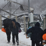 """""""Não podemos abandonar seres humanos na neve"""": ONG alertam para sofrimento de migrantes nos Balcãs"""