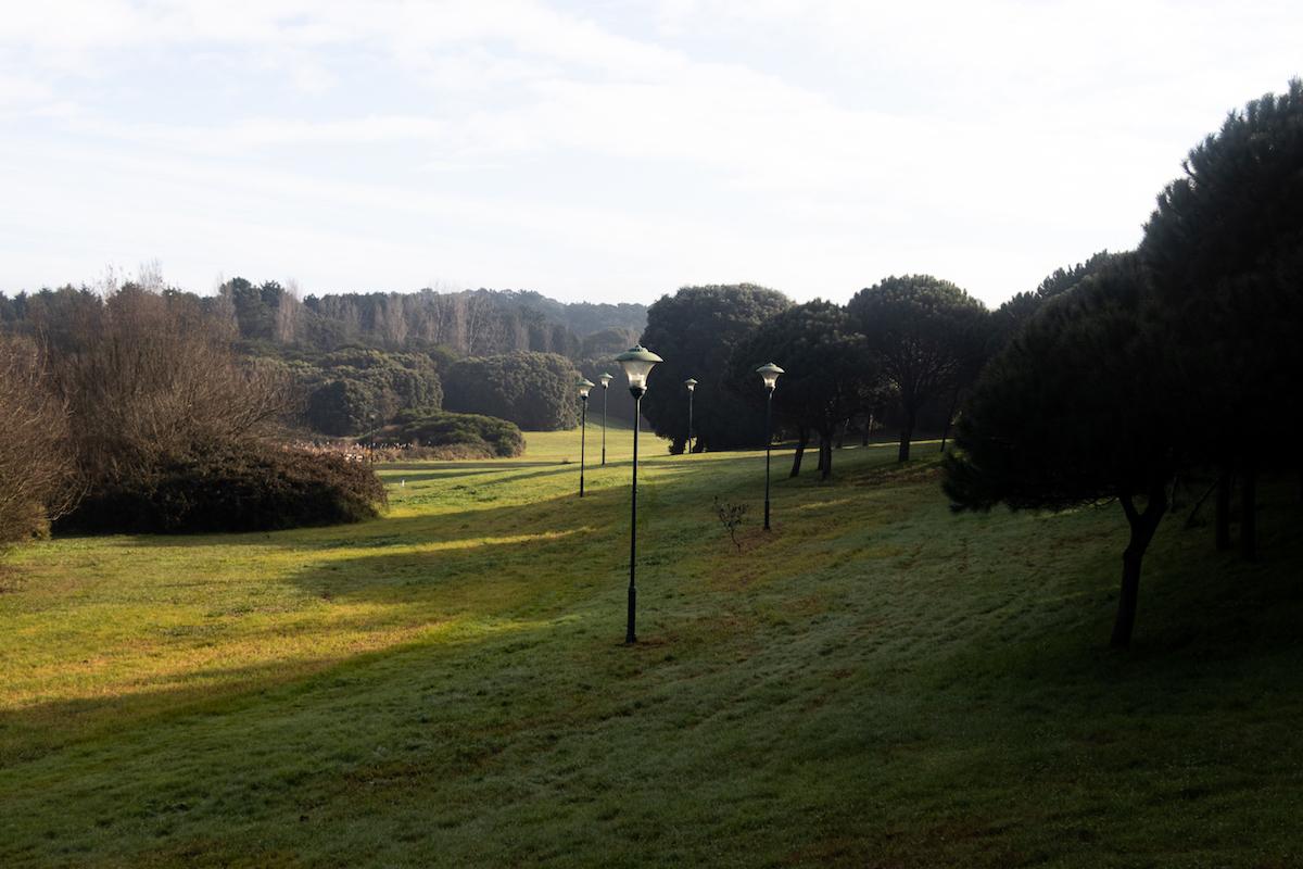 Porto, Natureza, Jardim, Parque, Cidade