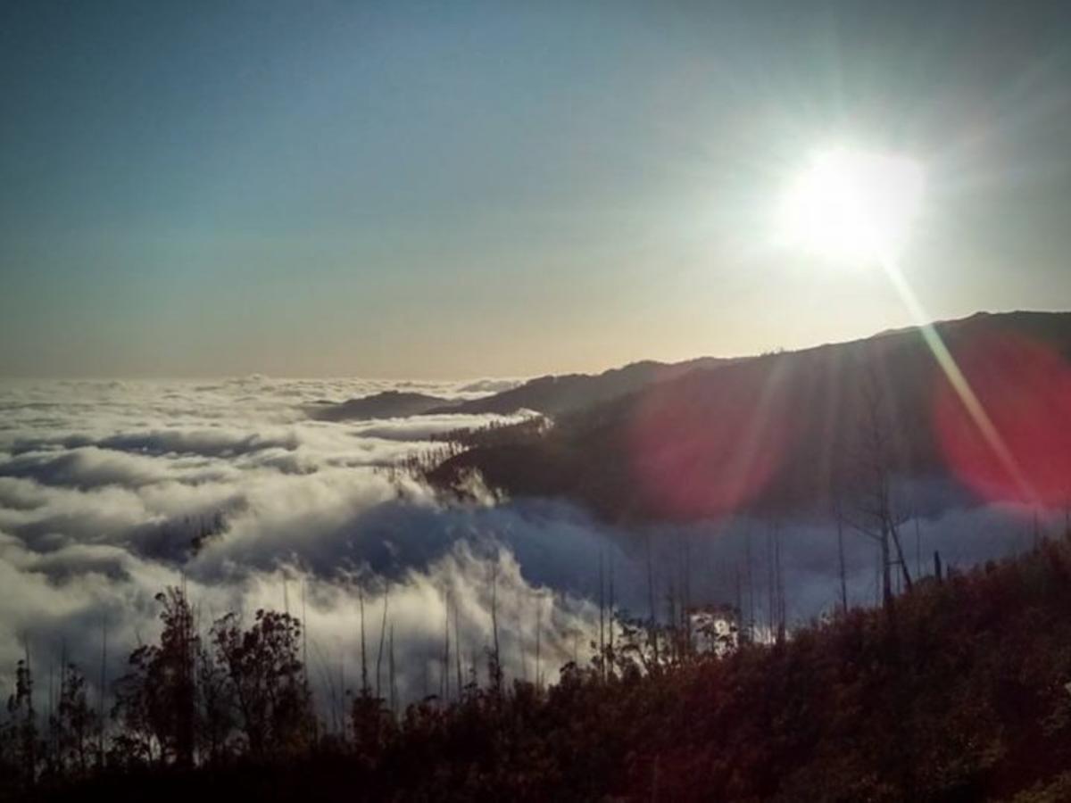Ilha da Madeira. © Tiago Gonçalves Paulino