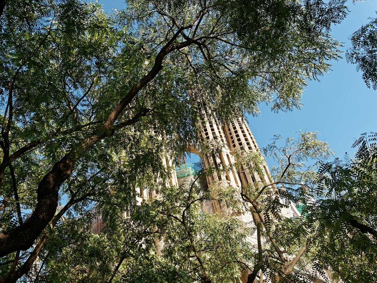 Barcelona Catalunha sagrada familia Foto Txllxt TxllxT_Wikimedia Commons