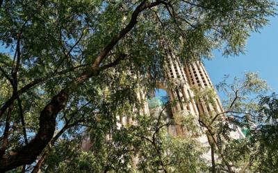 Mais de metade dos catalães não se consideram religiosos