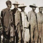 Alemanha reconhece ter cometido genocídio na Namíbia