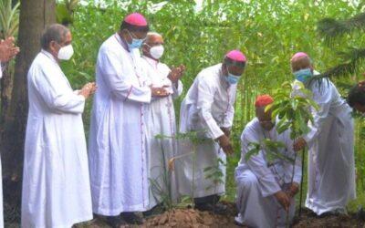 Papa lança Plataforma Laudato Si', plano de sete anos para dar à Igreja uma consciência e planos ecológicos