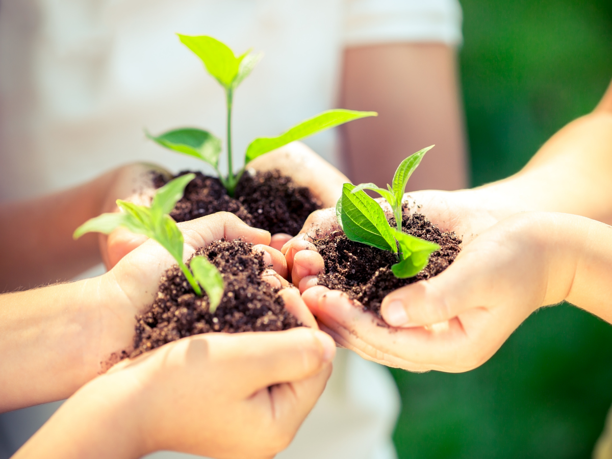 plantar cuidar planeta terra foto c yaruta