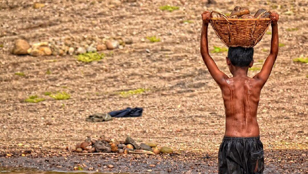 """Situações de """"trabalho escravo"""" de crianças"""